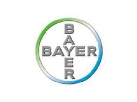 extrema_0016_bayer